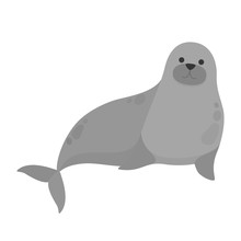 Seal Water Animal. Cute Creatu...