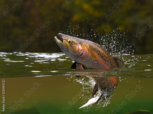Valokuvatapetti Brown trout fish jumping in river halfwater view 3d realitstic render