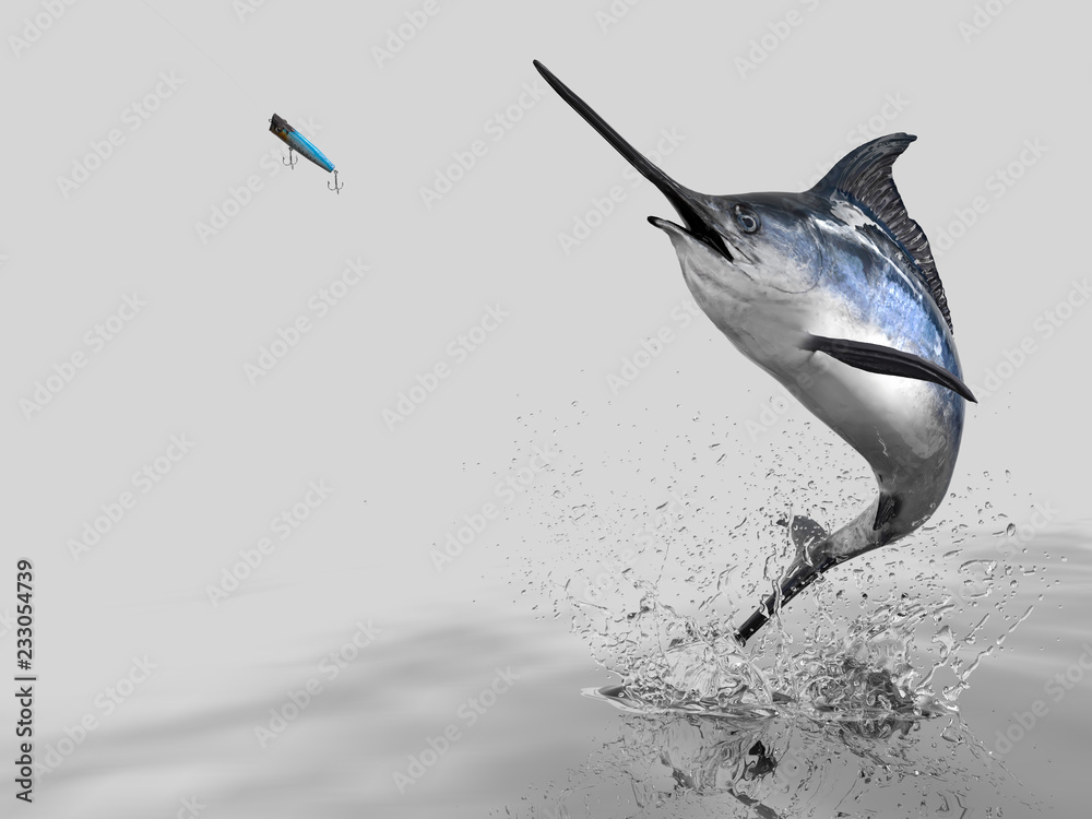 Fototapety, obrazy: Big catch of  Blue Marlin Sword fish  in white background with splashes hooked by popper bait 3d render