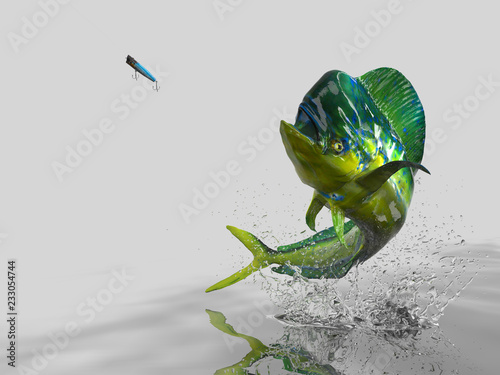 Fotografie, Obraz  Big catch of Mahi mahi dolphinfish in white background with splashes hooked by p