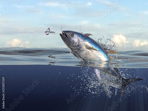 Poster Peche Tuna fish jumping out of water half of it in water, so many splashes and action in ocean 3d render