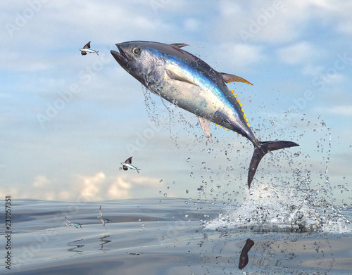 Obraz na plátně Flying fishes running away from yellow tail tuna fish 3d Render