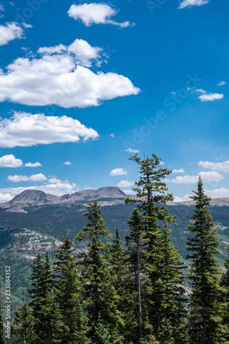 Fotografie, Obraz  Mountain scenery along Coal Bank Pass in the San Juan Mountains along the Millio