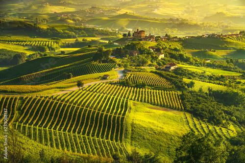 Garden Poster Vineyard Langhe vineyards sunset panorama, Grinzane Covour, Piedmont, Italy Europe.