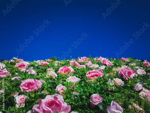Poster Fleur Artificial Flowers Wall for background