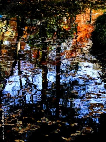 Fototapeta  日本の秋の池に映ったカラフルな紅葉