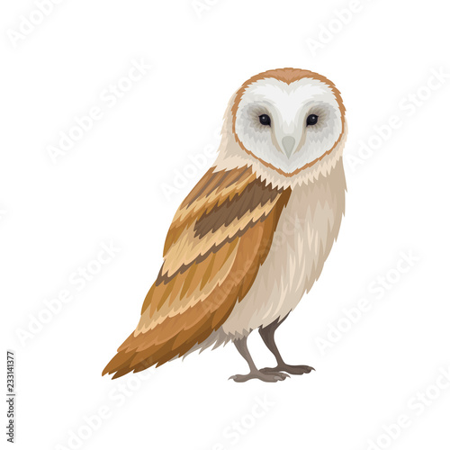 Barn owl with white face and brown wings, side view. Wild forest bird. Ornithology theme. Flat vector icon Fototapete