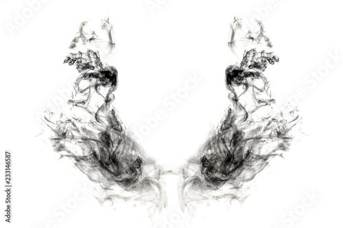 Fotomural  dark wings smoke