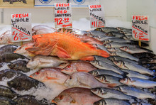 Fresh Fish On Ice For Sale At ...