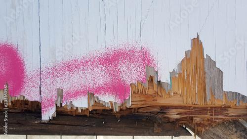 Tags sur palissade Canvas Print