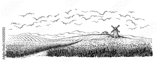 Fototapeta rural field with ripe wheat on background of mill, village and clouds. vector illustration obraz
