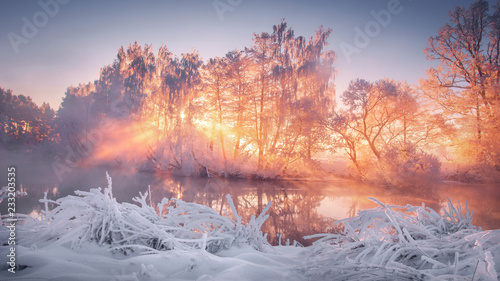 Poster Zalm Winter scenery at sunrise