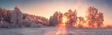 Fototapeta Na ścianę - Panorama of winter nature landscape at sunrise. Christmas background