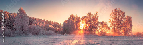 Poster Lavender Panorama of winter nature landscape at sunrise. Christmas background