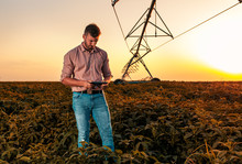 Young Farmer Holding Tablet In...