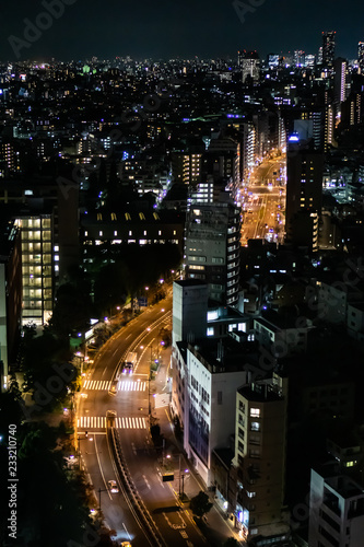 Fototapeta Tokyo night view with light trails on a road, shot from an observation deck in Bunkyo district obraz na płótnie