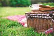 canvas print picture - Summer picnic with book and food on wicker basket in the park.