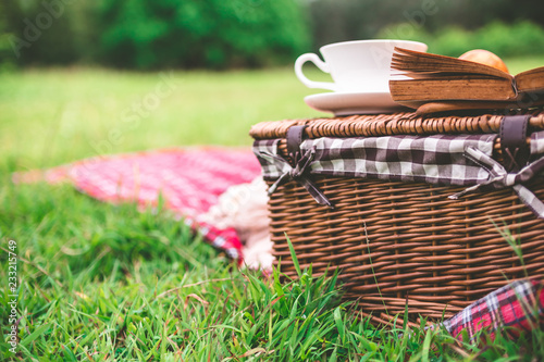 Summer picnic with book and food on wicker basket in the park. Canvas