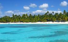 Tropical Beach In Caribbean Se...