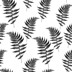 Panel Szklany Podświetlane Skandynawski Realistic fern seamless pattern illustration. Detailed bracken fern, tropical forest, grass herbs growing background.