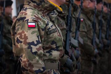 Żołnierze w szeregu