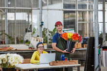 Florists With Gerbera Daisies At Desk In Greenhouse