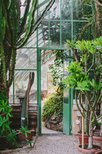 Greenhouse In Rome's Botanical Gardens