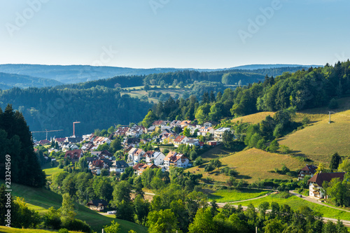 Germany, Idyllic black forest village of Elzach from above