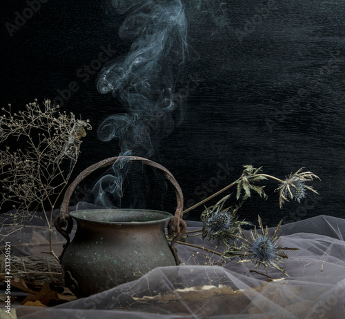 Magic pot with herbs and witchcraft - Buy this stock photo and