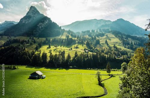 Fotografie, Obraz  Berner Alpen, Schweiz, Kiental mit Wiesen, Wald und Bergen