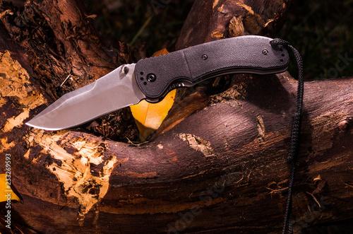 Folding knife on the old stump. Light pattern on the knife.