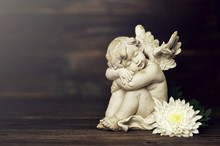 Angel And White Flower