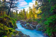 Little Qualicum Falls, A Popul...