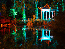 Illuminated Japanese Style Pagoda In The Forest At Night