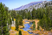 Rock Creek (on The Little Lakes Valley Hiking Trail) Surrounded By Meadows And Evergreen Forests In The Eastern Sierra Mountains, California