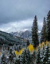 Utah Fall Scenes