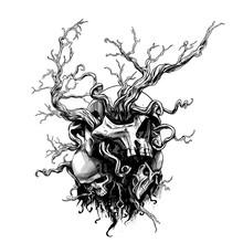 Skulls Of People In Roots
