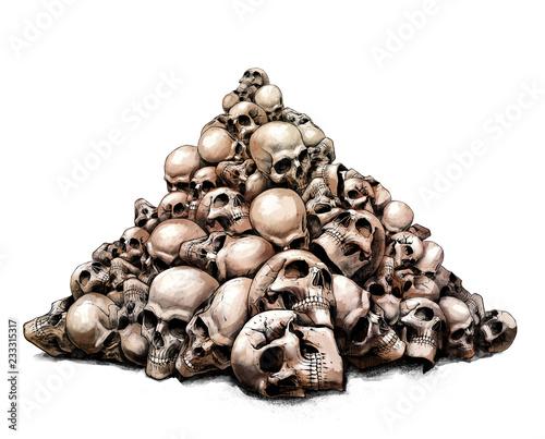Fotografia, Obraz  a slide of human skulls