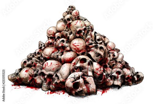 a slide of human skulls Canvas Print