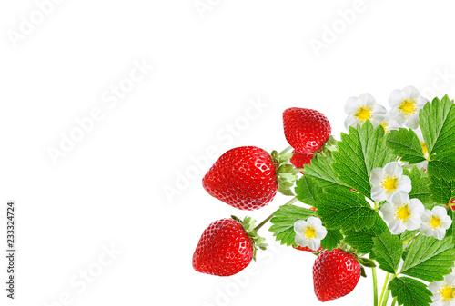 tasty red strawberries on white