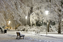 Park At Night Covered With Fresh Snow. City At Night.