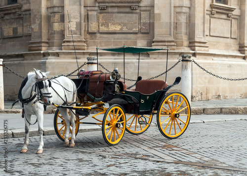 Fotomural Horse carriage in front of the Giralda in Seville