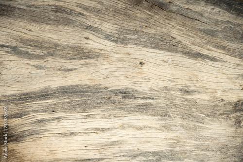 Fototapeta close up wood tree background and textured obraz na płótnie