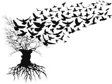 Birds Flying Away Dead Branche...