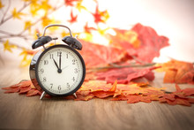 Old Clock On Autumn Leaves