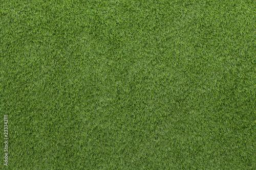 Artificial Grass Field Texture Canvas Print