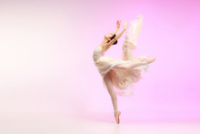 Young Graceful Female Ballet D...