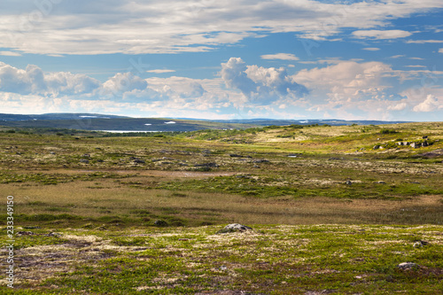 In de dag Poolcirkel Tundra landscape in the north of Russia
