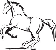 Black And White Silhouette Of A Running Horse