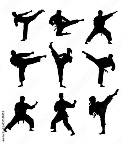 Fototapeta  Martial Arts Silhouettes
